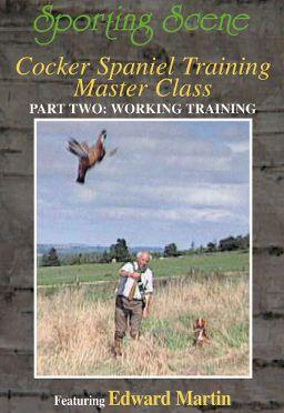 Cocker Spaniel Training Masterclass Part 2