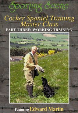 Cocker Spaniel Training Masterclass Part 3